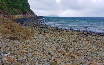 Khám Phá & Chinh Phục Bãi Bàng Côn Đảo